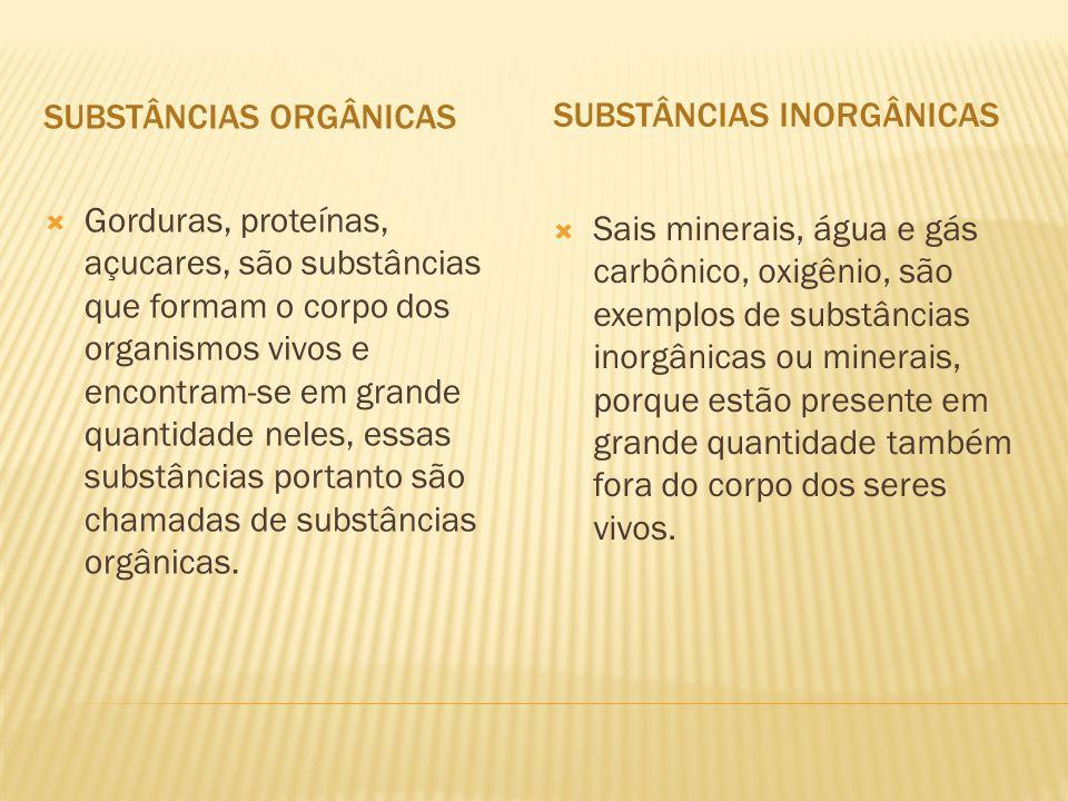 SUBSTÂNCIAS INORGÂNICAS  Gorduras, proteínas, açucares, são substâncias que formam o corpo dos organismos vivos e encontram-se em grande quantidade neles, essas substâncias portanto são chamadas de substâncias orgânicas.