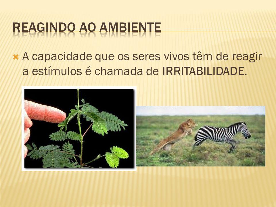  A capacidade que os seres vivos têm de reagir a estímulos é chamada de IRRITABILIDADE.