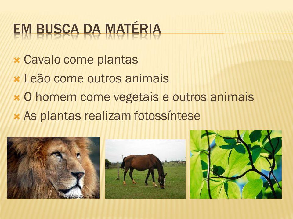  Cavalo come plantas  Leão come outros animais  O homem come vegetais e outros animais  As plantas realizam fotossíntese