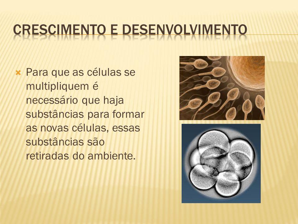  Para que as células se multipliquem é necessário que haja substâncias para formar as novas células, essas substâncias são retiradas do ambiente.