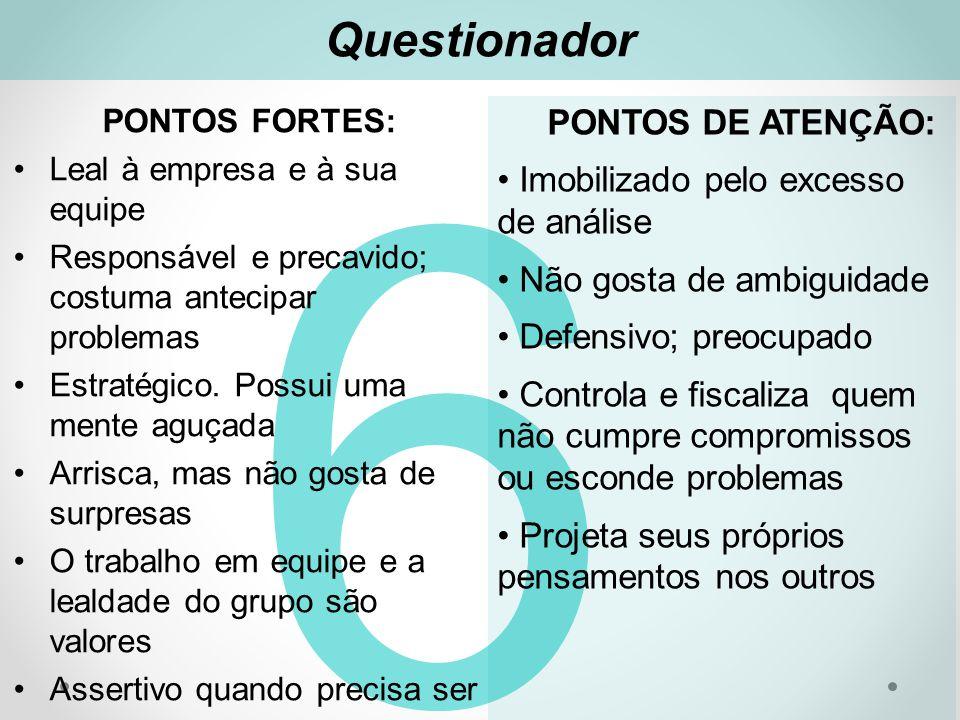 Questionador 6 PONTOS FORTES: Leal à empresa e à sua equipe Responsável e precavido; costuma antecipar problemas Estratégico.