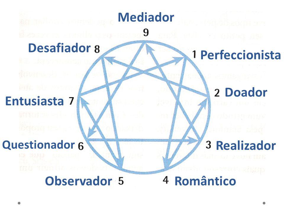 5 Observador PONTOS FORTES: Analítico: discute idéias com alguns da equipe Visão sistêmica Perceptivo, objetivo, faz anotações minuciosas Conhecedor.