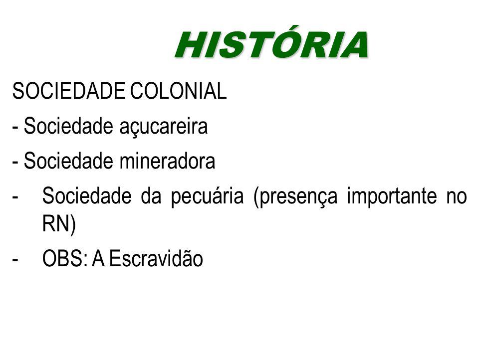 SOCIEDADE COLONIAL - Sociedade açucareira - Sociedade mineradora -Sociedade da pecuária (presença importante no RN) -OBS: A Escravidão HISTÓRIAHISTÓRI