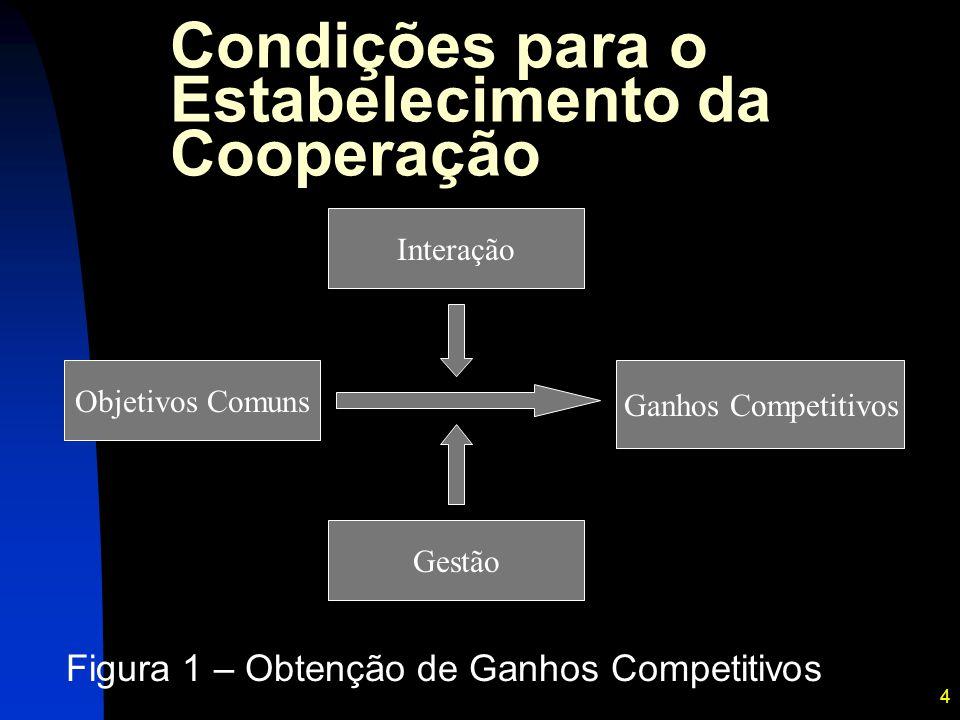 4 Condições para o Estabelecimento da Cooperação Figura 1 – Obtenção de Ganhos Competitivos Objetivos Comuns Ganhos Competitivos Gestão Interação