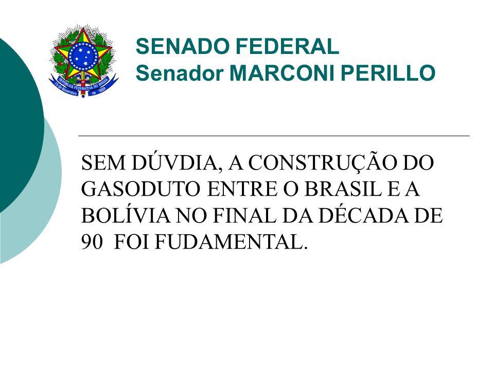 SEM DÚVDIA, A CONSTRUÇÃO DO GASODUTO ENTRE O BRASIL E A BOLÍVIA NO FINAL DA DÉCADA DE 90 FOI FUDAMENTAL.