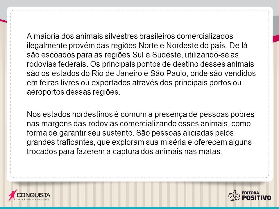 A maioria dos animais silvestres brasileiros comercializados ilegalmente provém das regiões Norte e Nordeste do país. De lá são escoados para as regiõ