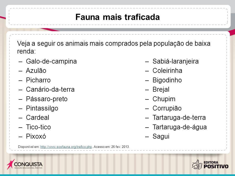 –Galo-de-campina –Azulão –Picharro –Canário-da-terra –Pássaro-preto –Pintassilgo –Cardeal –Tico-tico –Pixoxó –Sabiá-laranjeira –Coleirinha –Bigodinho –Brejal –Chupim –Corrupião –Tartaruga-de-terra –Tartaruga-de-água –Sagui Disponível em: http://www.sosfauna.org/trafico.php.