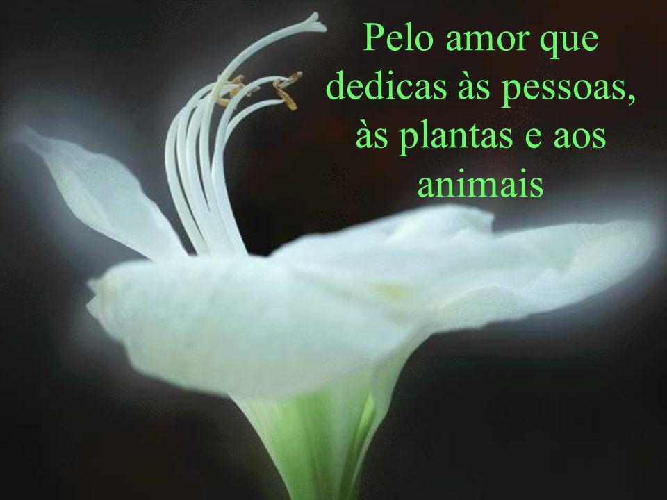 Pelo amor que dedicas às pessoas, às plantas e aos animais
