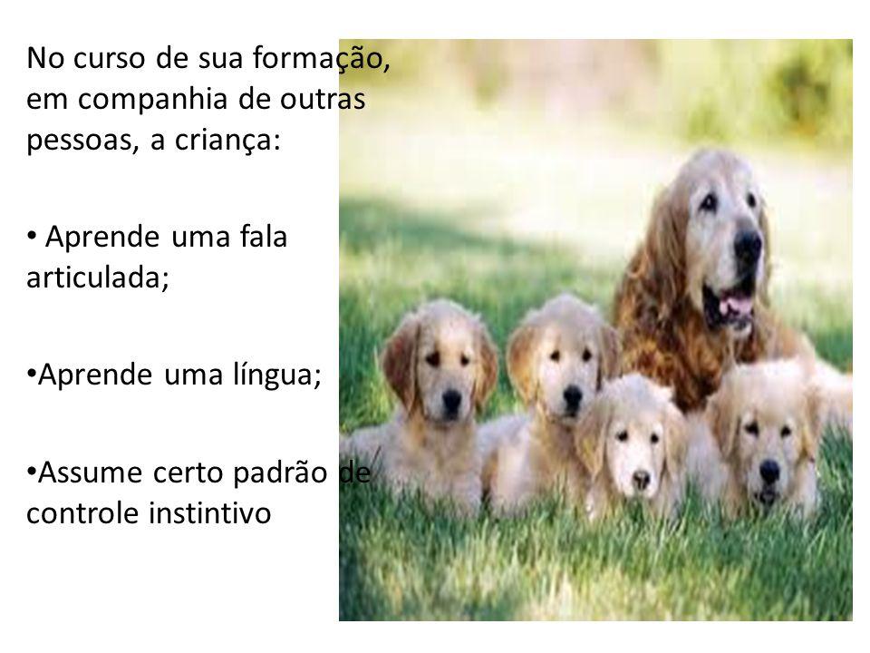 No curso de sua formação, em companhia de outras pessoas, a criança: Aprende uma fala articulada; Aprende uma língua; Assume certo padrão de controle