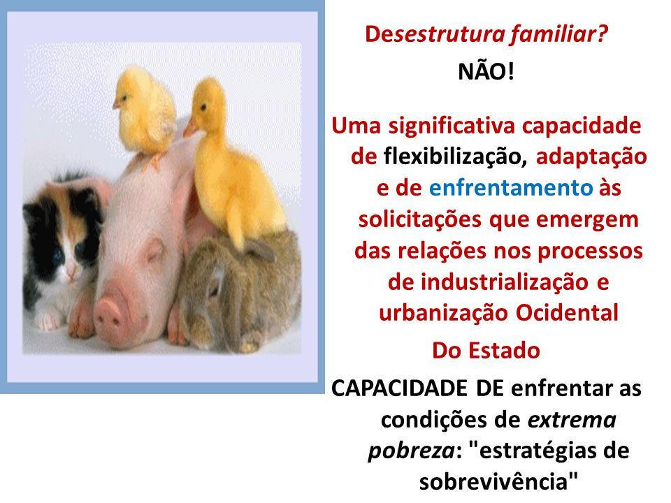 Desestrutura familiar? NÃO! Uma significativa capacidade de flexibilização, adaptação e de enfrentamento às solicitações que emergem das relações nos