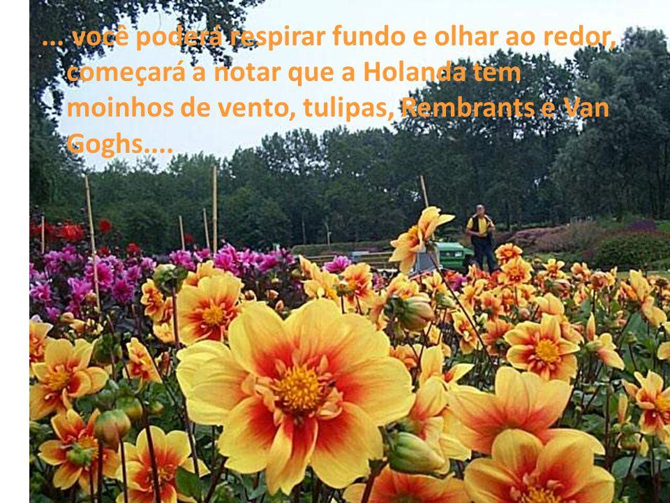 ... você poderá respirar fundo e olhar ao redor, começará a notar que a Holanda tem moinhos de vento, tulipas, Rembrants e Van Goghs....