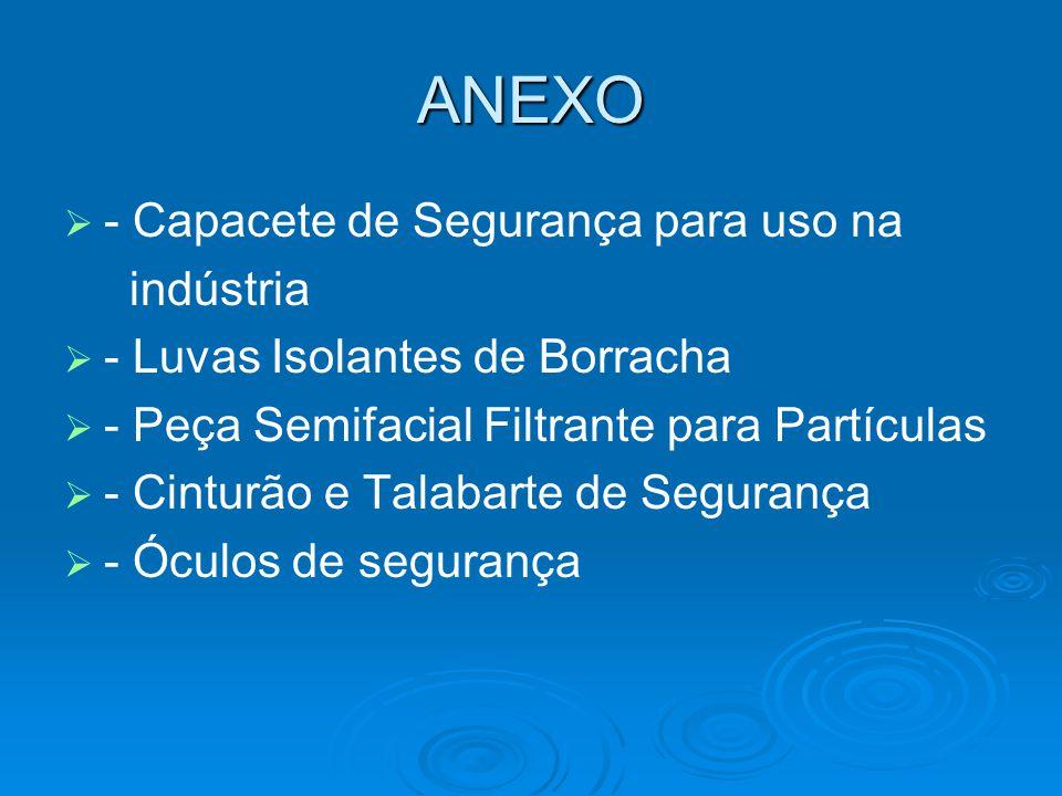 ANEXO   - Capacete de Segurança para uso na indústria   - Luvas Isolantes de Borracha   - Peça Semifacial Filtrante para Partículas   - Cintur