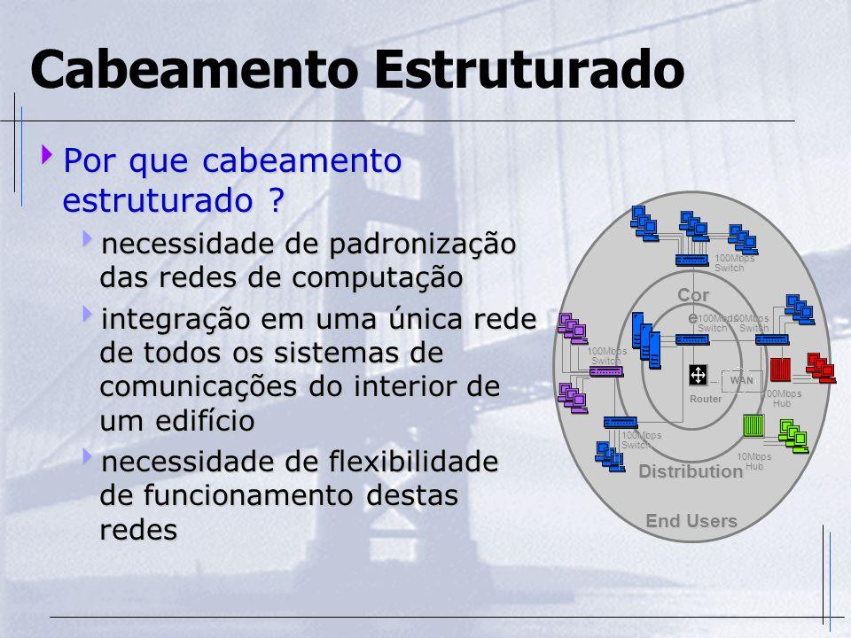 Cabeamento Estruturado  Por que cabeamento estruturado ?  necessidade de padronização das redes de computação  integração em uma única rede de todo