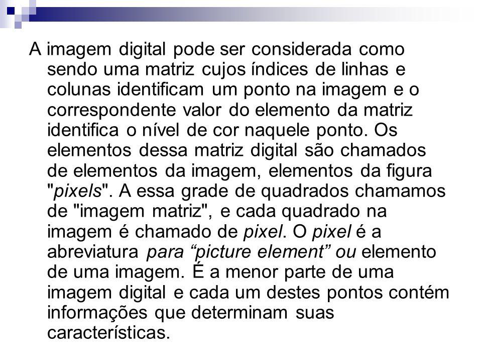 A imagem digital pode ser considerada como sendo uma matriz cujos índices de linhas e colunas identificam um ponto na imagem e o correspondente valor