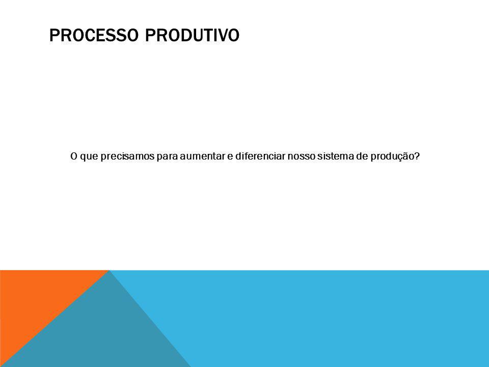 PROCESSO PRODUTIVO O que precisamos para aumentar e diferenciar nosso sistema de produção?