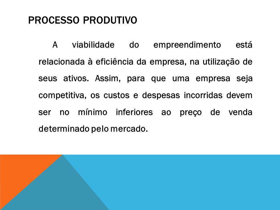 PROCESSO PRODUTIVO A viabilidade do empreendimento está relacionada à eficiência da empresa, na utilização de seus ativos. Assim, para que uma empresa