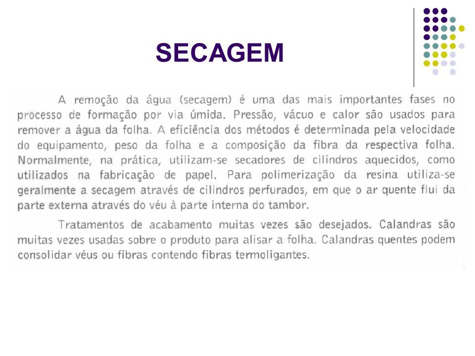 SECAGEM