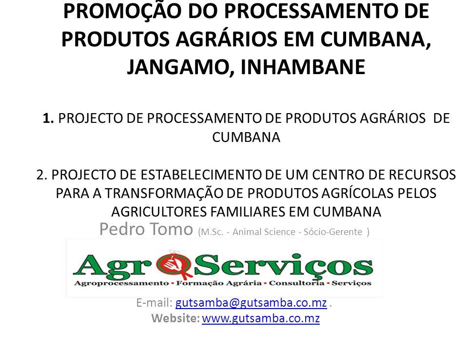 PROMOÇÃO DO PROCESSAMENTO DE PRODUTOS AGRÁRIOS EM CUMBANA, JANGAMO, INHAMBANE 1. PROJECTO DE PROCESSAMENTO DE PRODUTOS AGRÁRIOS DE CUMBANA 2. PROJECTO