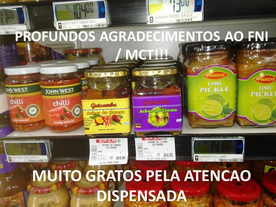 MUITO GRATOS PELA ATENCAO DISPENSADA PROFUNDOS AGRADECIMENTOS AO FNI / MCT!!!