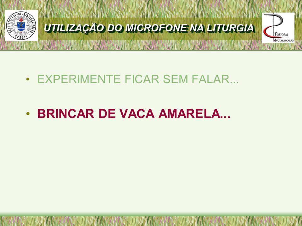 EXPERIMENTE FICAR SEM FALAR... BRINCAR DE VACA AMARELA... UTILIZAÇÃO DO MICROFONE NA LITURGIA
