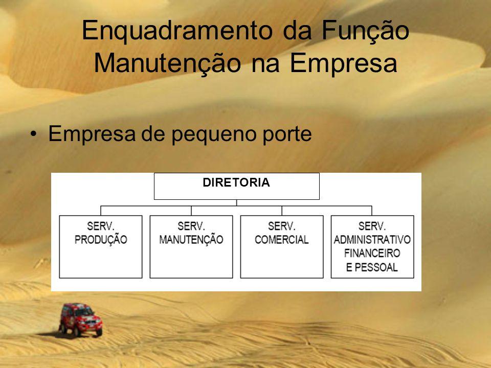 Enquadramento da Função Manutenção na Empresa Empresa de pequeno porte DIRETORIA