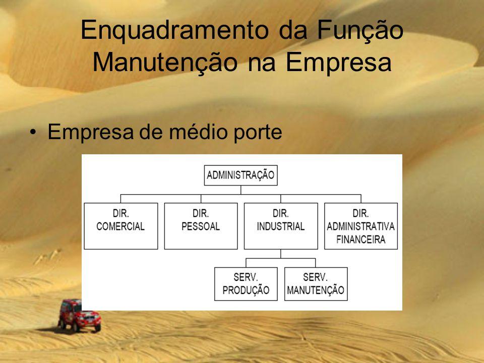 Enquadramento da Função Manutenção na Empresa Empresa de médio porte