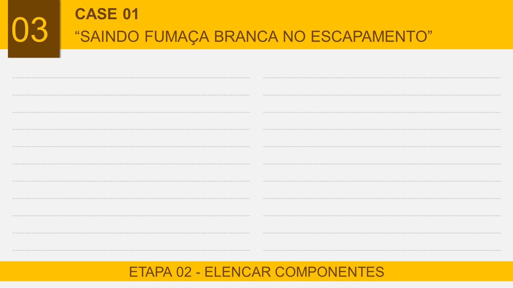 "03 ETAPA 02 - ELENCAR COMPONENTES CASE 01 ""SAINDO FUMAÇA BRANCA NO ESCAPAMENTO"""