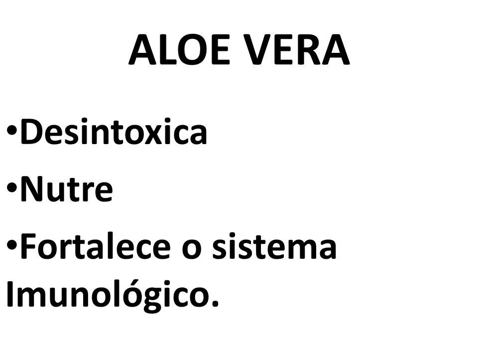 ALOE VERA Desintoxica Nutre Fortalece o sistema Imunológico.