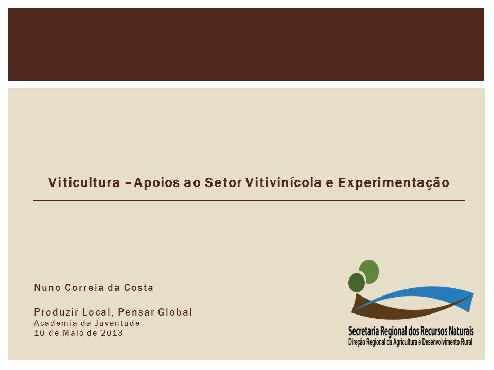 Viticultura –Apoios ao Setor Vitivinícola e Experimentação Nuno Correia da Costa Produzir Local, Pensar Global Academia da Juventude 10 de Maio de 2013