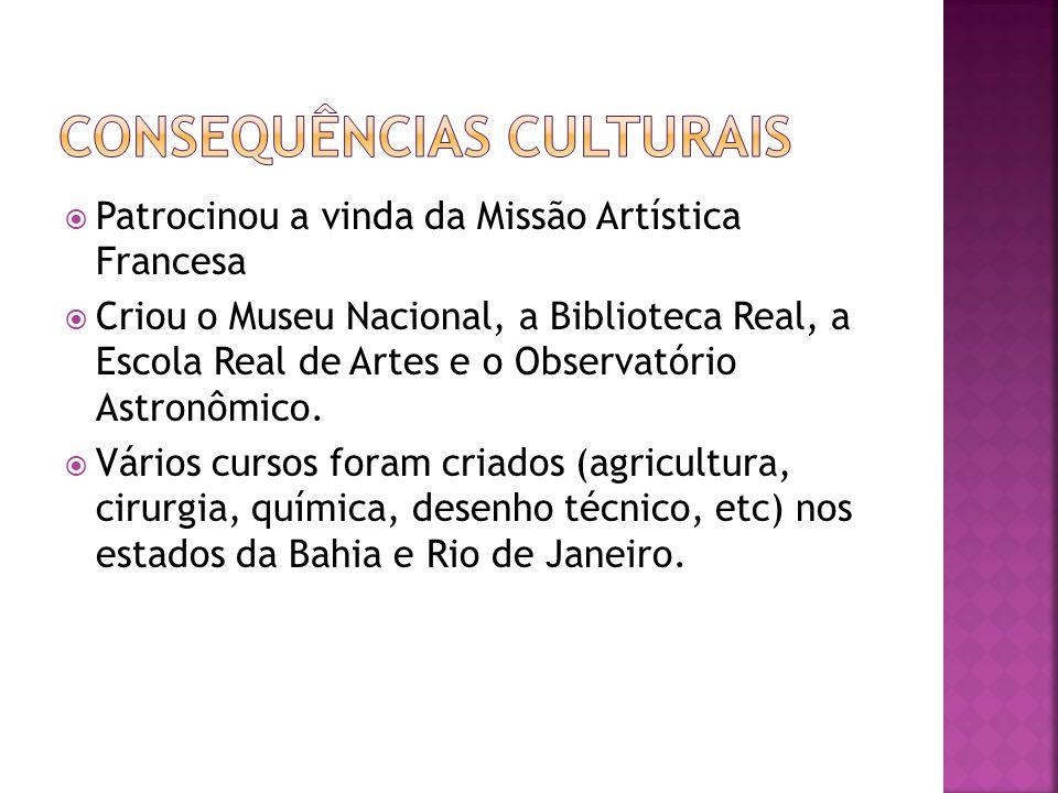  Patrocinou a vinda da Missão Artística Francesa  Criou o Museu Nacional, a Biblioteca Real, a Escola Real de Artes e o Observatório Astronômico.