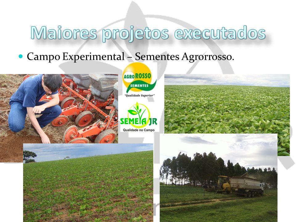 Campo Experimental – Sementes Agrorrosso.
