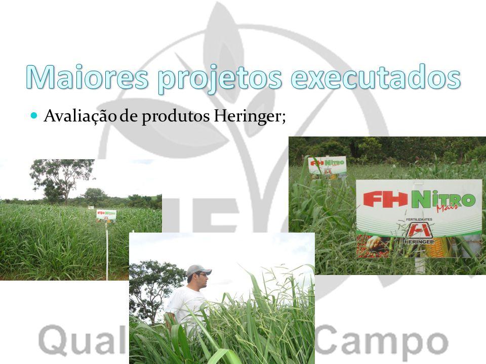 Avaliação de produtos Heringer;