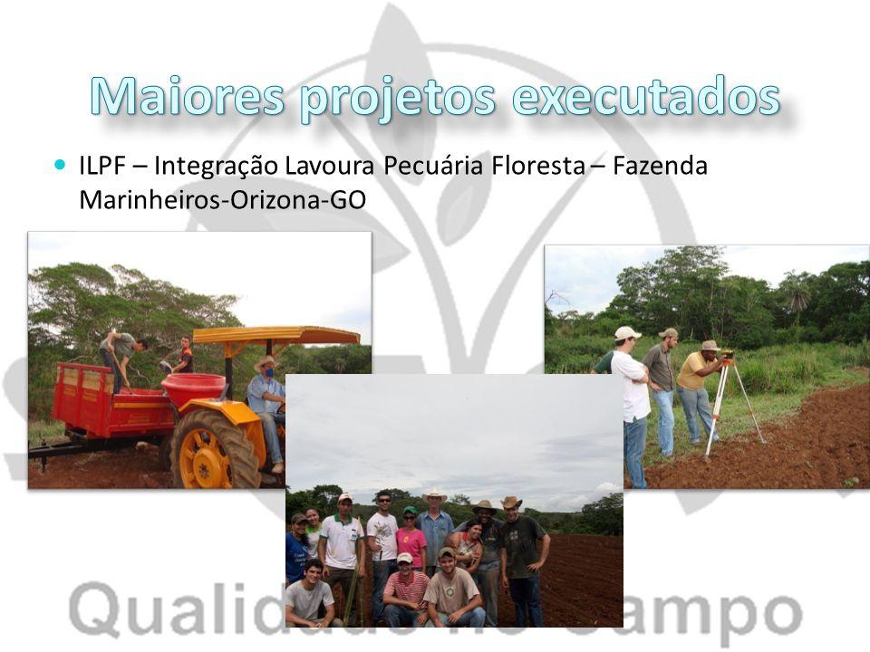 ILPF – Integração Lavoura Pecuária Floresta – Fazenda Marinheiros-Orizona-GO