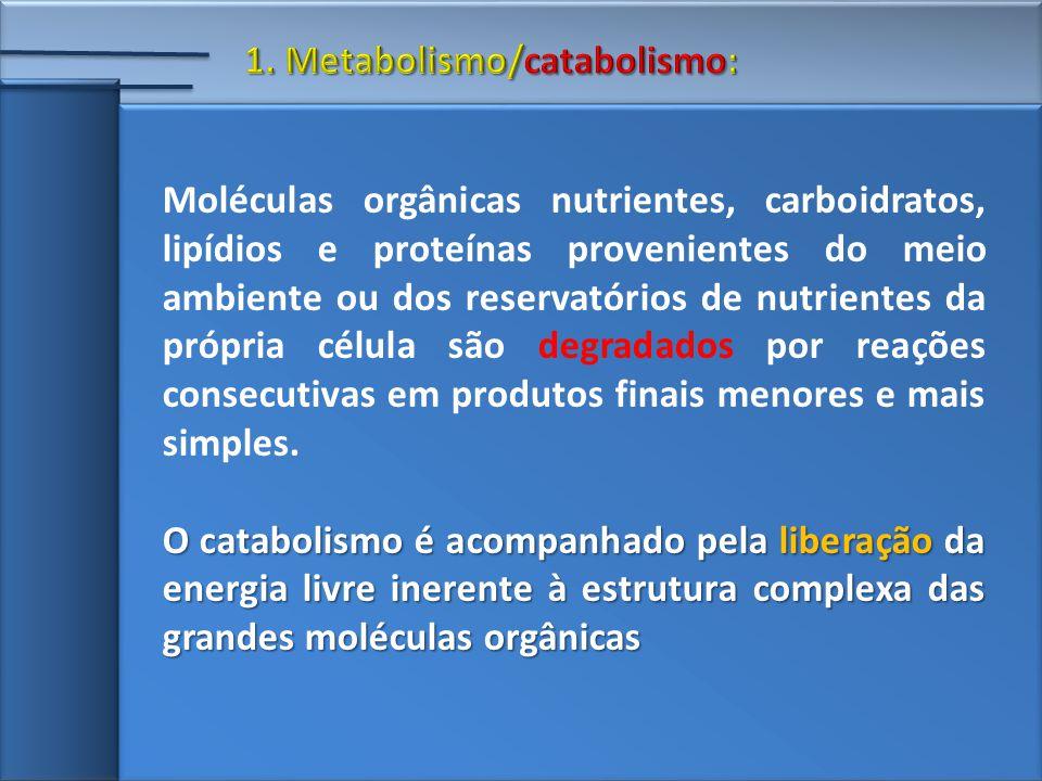 Moléculas orgânicas nutrientes, carboidratos, lipídios e proteínas provenientes do meio ambiente ou dos reservatórios de nutrientes da própria célula são degradados por reações consecutivas em produtos finais menores e mais simples.