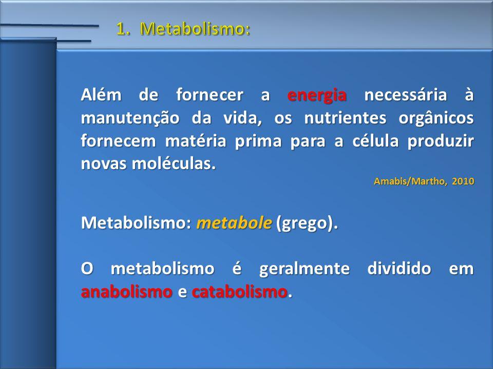 Além de fornecer a energia necessária à manutenção da vida, os nutrientes orgânicos fornecem matéria prima para a célula produzir novas moléculas.