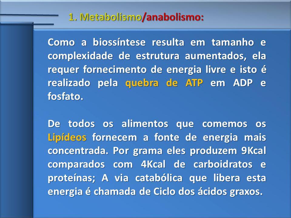 Como a biossíntese resulta em tamanho e complexidade de estrutura aumentados, ela requer fornecimento de energia livre e isto é realizado pela quebra de ATP em ADP e fosfato.