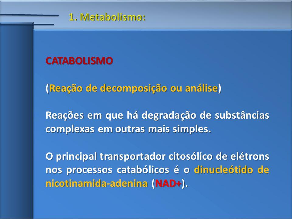 CATABOLISMO (Reação de decomposição ou análise) Reações em que há degradação de substâncias complexas em outras mais simples.
