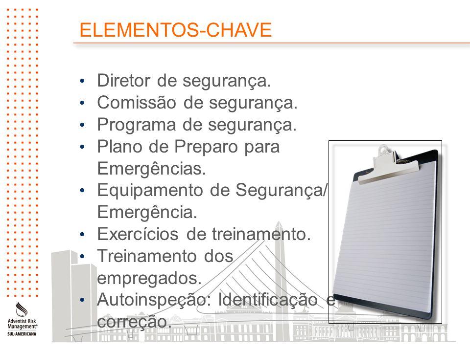 ELEMENTOS-CHAVE Diretor de segurança. Comissão de segurança.