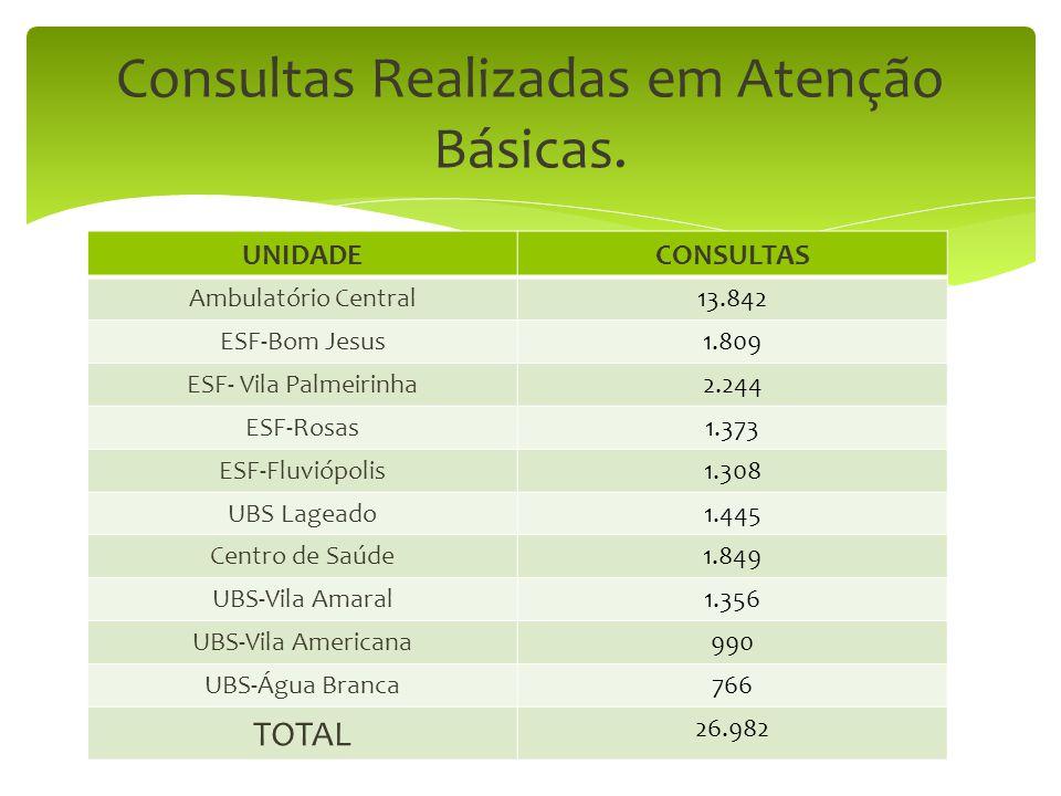 UNIDADECONSULTAS Ambulatório Central13.842 ESF-Bom Jesus1.809 ESF- Vila Palmeirinha2.244 ESF-Rosas1.373 ESF-Fluviópolis1.308 UBS Lageado1.445 Centro d