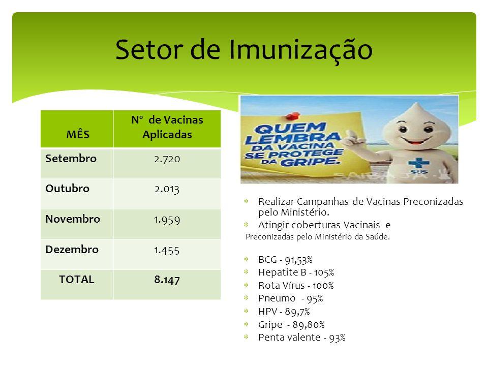 Setor de Imunização MÊS Nº de Vacinas Aplicadas Setembro2.720 Outubro2.013 Novembro1.959 Dezembro1.455 TOTAL8.147  Realizar Campanhas de Vacinas Preconizadas pelo Ministério.