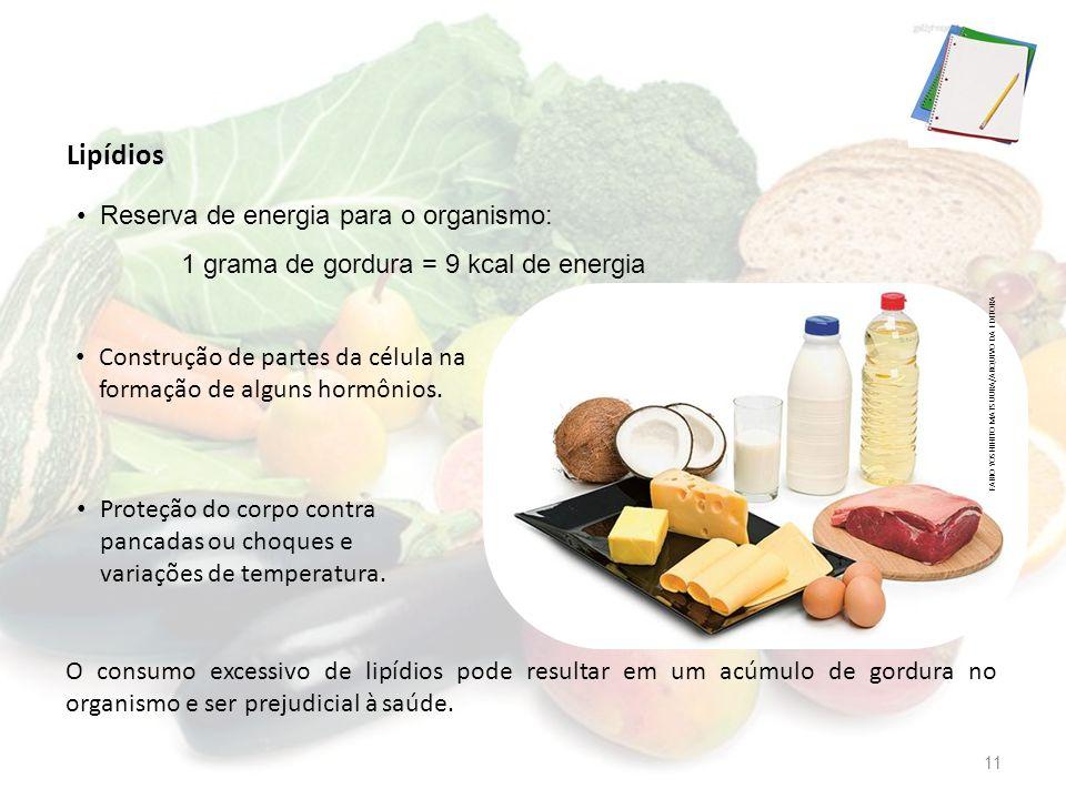 Reserva de energia para o organismo: 1 grama de gordura = 9 kcal de energia O consumo excessivo de lipídios pode resultar em um acúmulo de gordura no