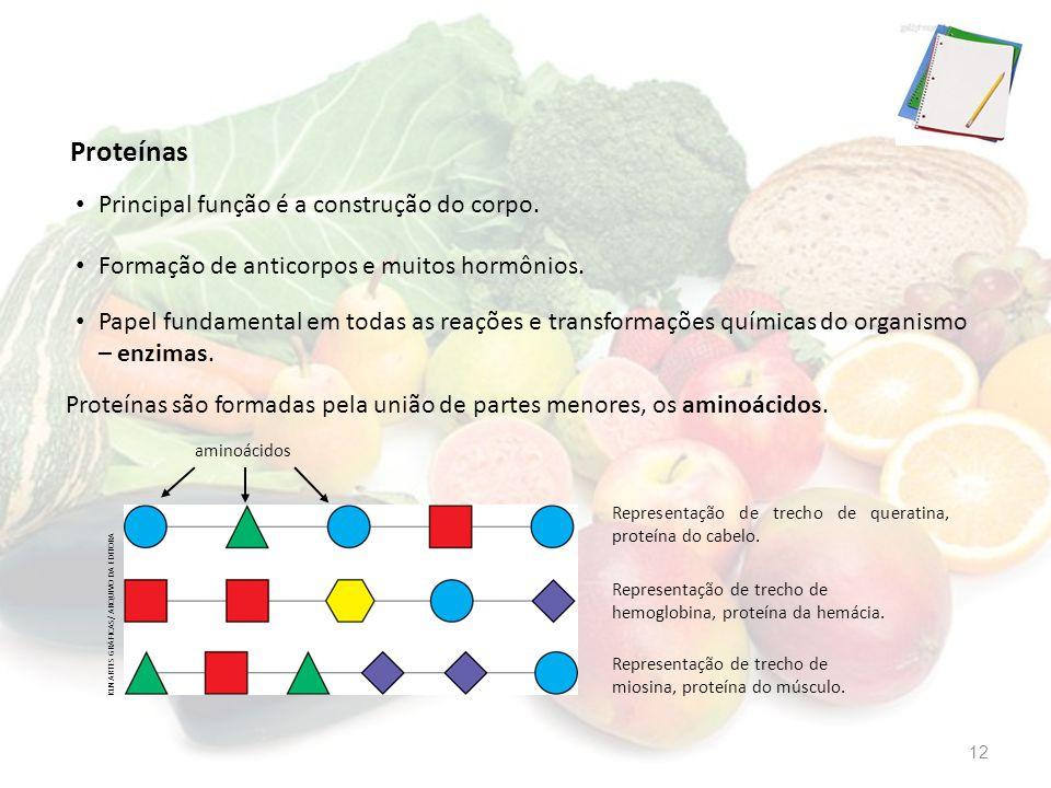 Principal função é a construção do corpo. Proteínas são formadas pela união de partes menores, os aminoácidos. Papel fundamental em todas as reações e
