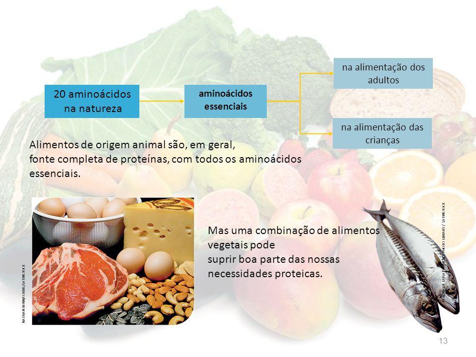20 aminoácidos na natureza aminoácidos essenciais na alimentação dos adultos na alimentação das crianças Alimentos de origem animal são, em geral, fon