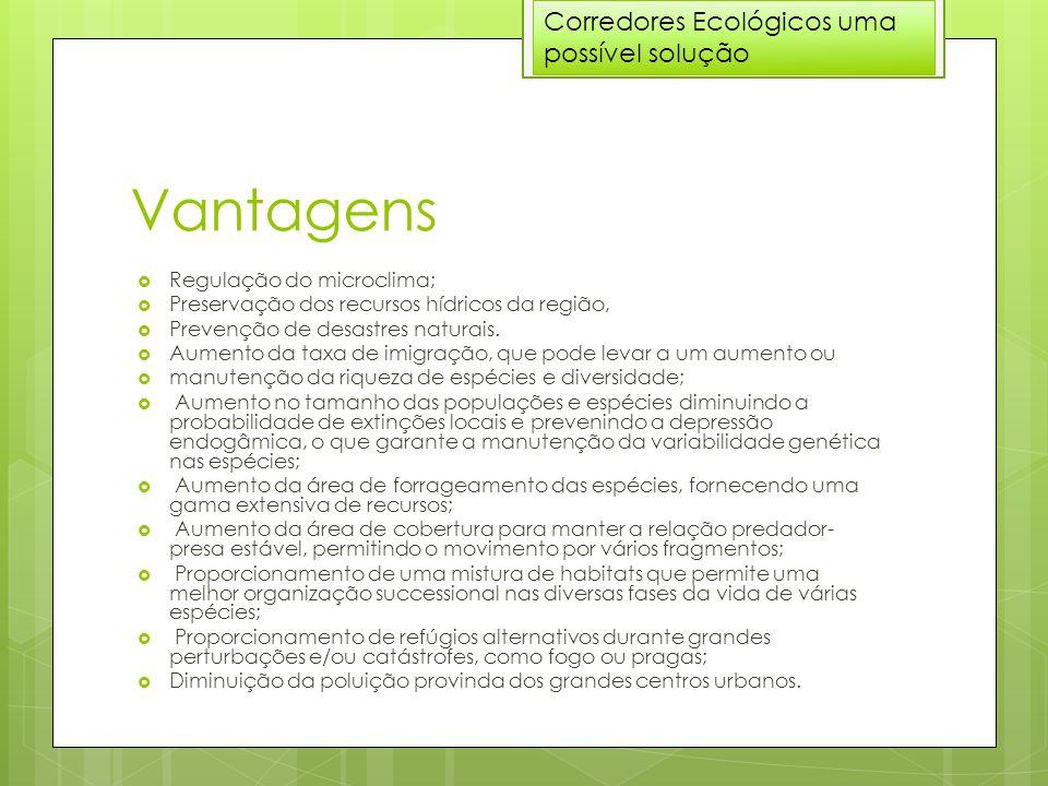 Vantagens  Regulação do microclima;  Preservação dos recursos hídricos da região,  Prevenção de desastres naturais.