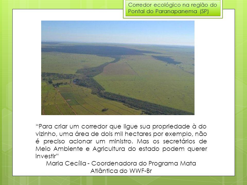 Corredor ecológico na região do Pontal do Paranapanema (SP) Para criar um corredor que ligue sua propriedade à do vizinho, uma área de dois mil hectares por exemplo, não é preciso acionar um ministro.