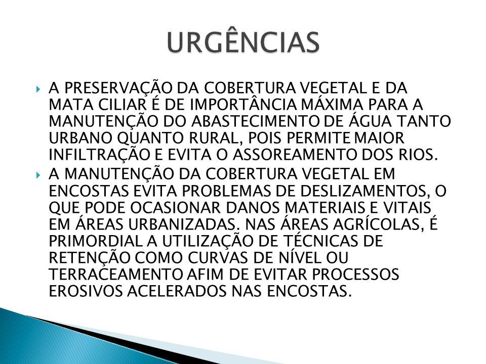  A PRESERVAÇÃO DA COBERTURA VEGETAL E DA MATA CILIAR É DE IMPORTÂNCIA MÁXIMA PARA A MANUTENÇÃO DO ABASTECIMENTO DE ÁGUA TANTO URBANO QUANTO RURAL, POIS PERMITE MAIOR INFILTRAÇÃO E EVITA O ASSOREAMENTO DOS RIOS.
