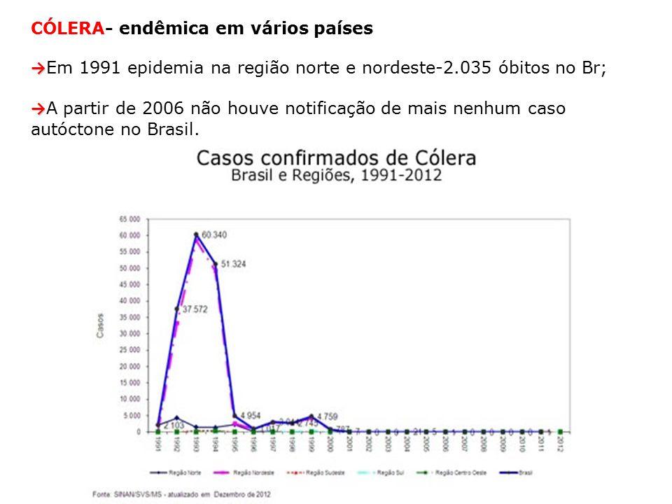 CÓLERA- endêmica em vários países → → Em 1991 epidemia na região norte e nordeste-2.035 óbitos no Br; → → A partir de 2006 não houve notificação de mais nenhum caso autóctone no Brasil.