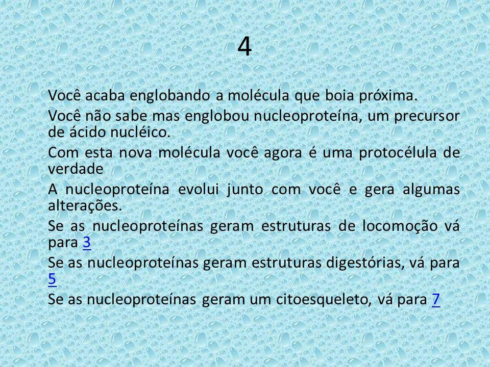 4 Você acaba englobando a molécula que boia próxima. Você não sabe mas englobou nucleoproteína, um precursor de ácido nucléico. Com esta nova molécula