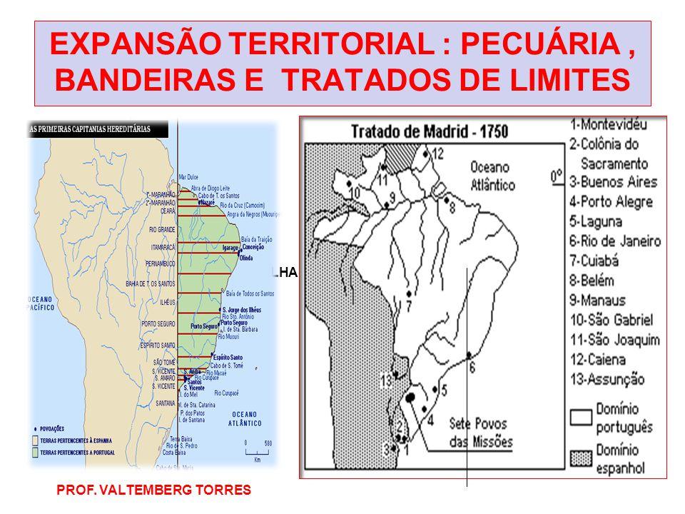 EXPANSÃO TERRITORIAL : PECUÁRIA, BANDEIRAS E TRATADOS DE LIMITES BRASIL DO TRATADO DE TORDESILHAS 1534 PROF. VALTEMBERG TORRES