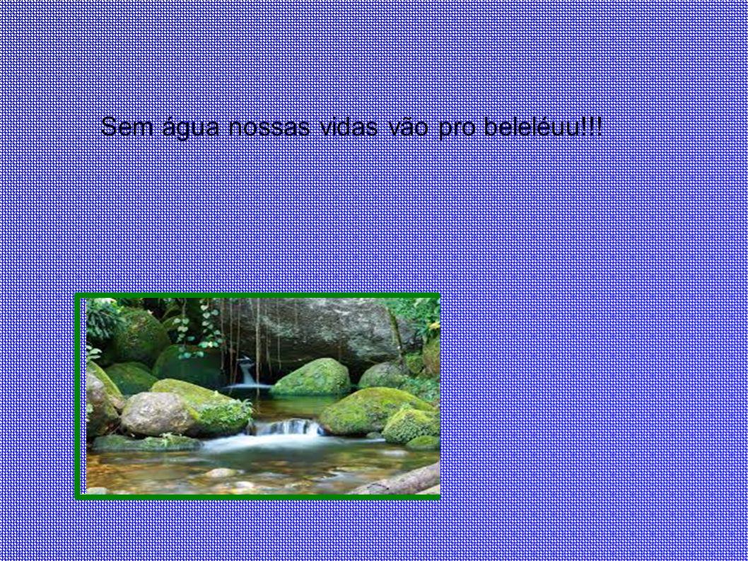 Sem água nossas vidas vão pro beleléuu!!!